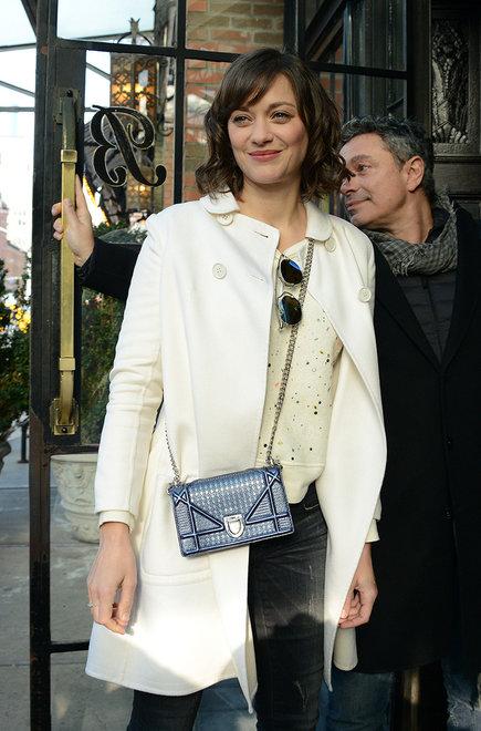 marion-cotillard-dior-it-bag-campaign.jpg