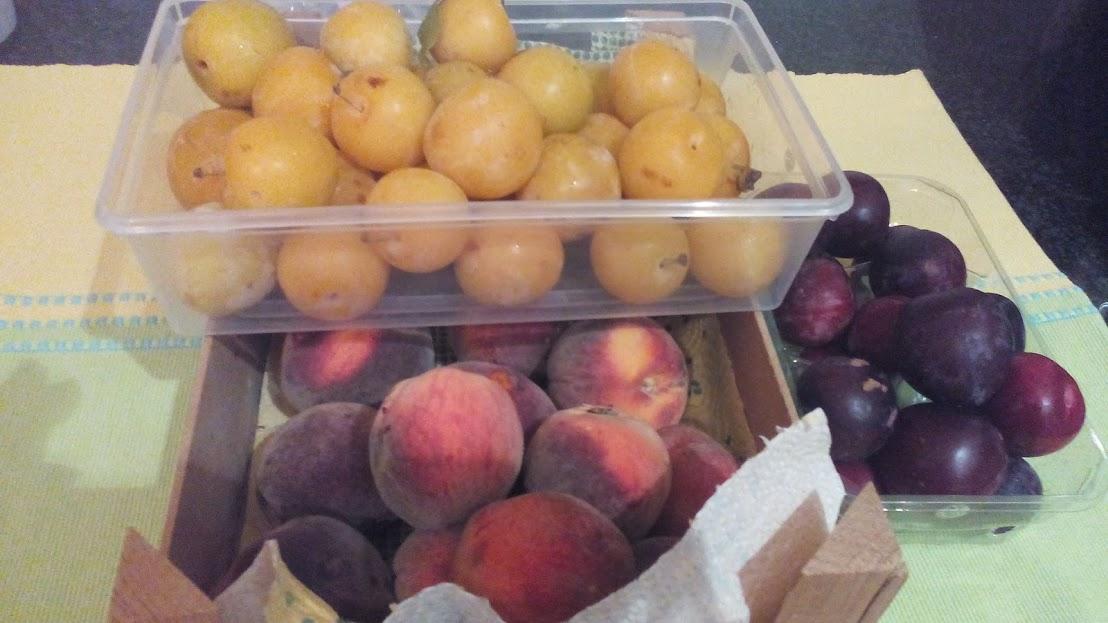 fruta para compota.jpg