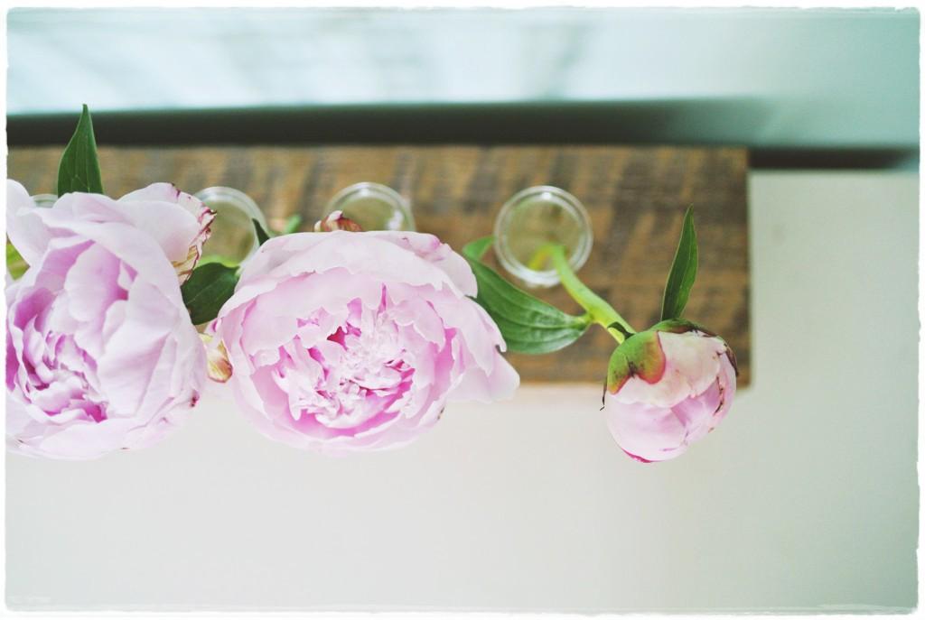 vaso - diy - com tubos de ensaio_.jpg