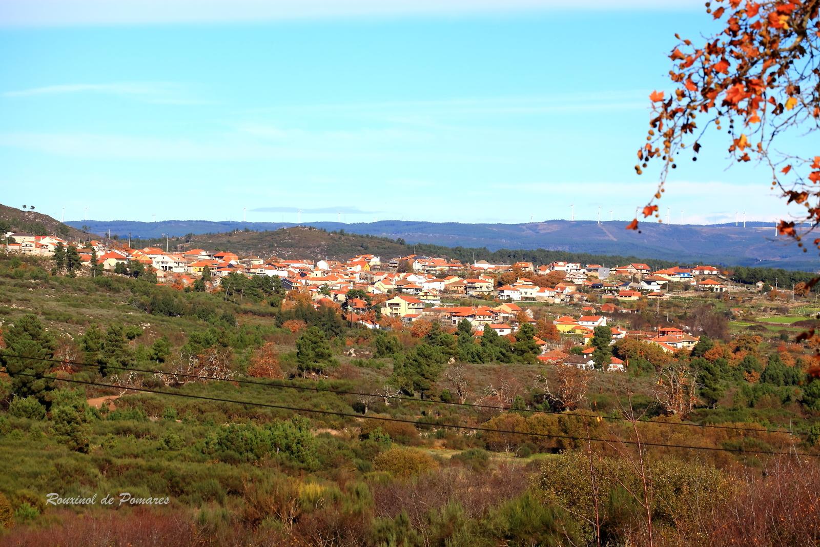 Fiolhoso - Trás-os-Montes Nov (1)