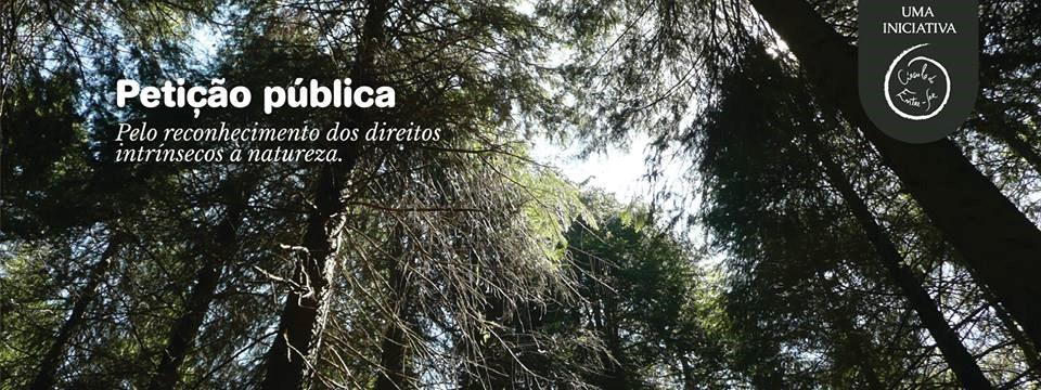 PETIÇÃO PÚBLICA.jpg