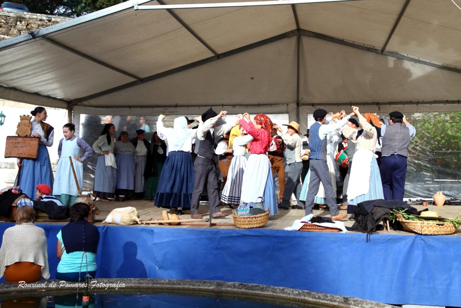 Festa da Castanha Vale de Maceira 2014 (006)