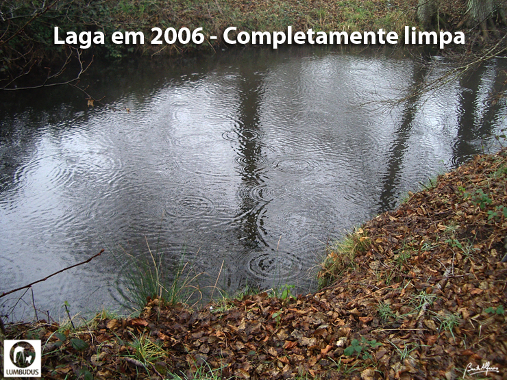 IMGP0430-Blogue.jpg