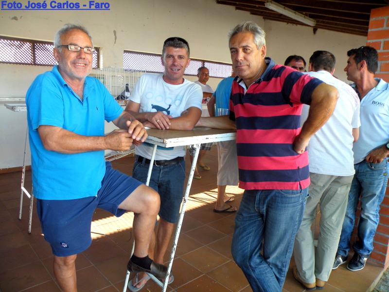 Leilão Castro Verde 013.JPG