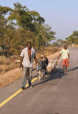 Projecto Okavango-Zambeze