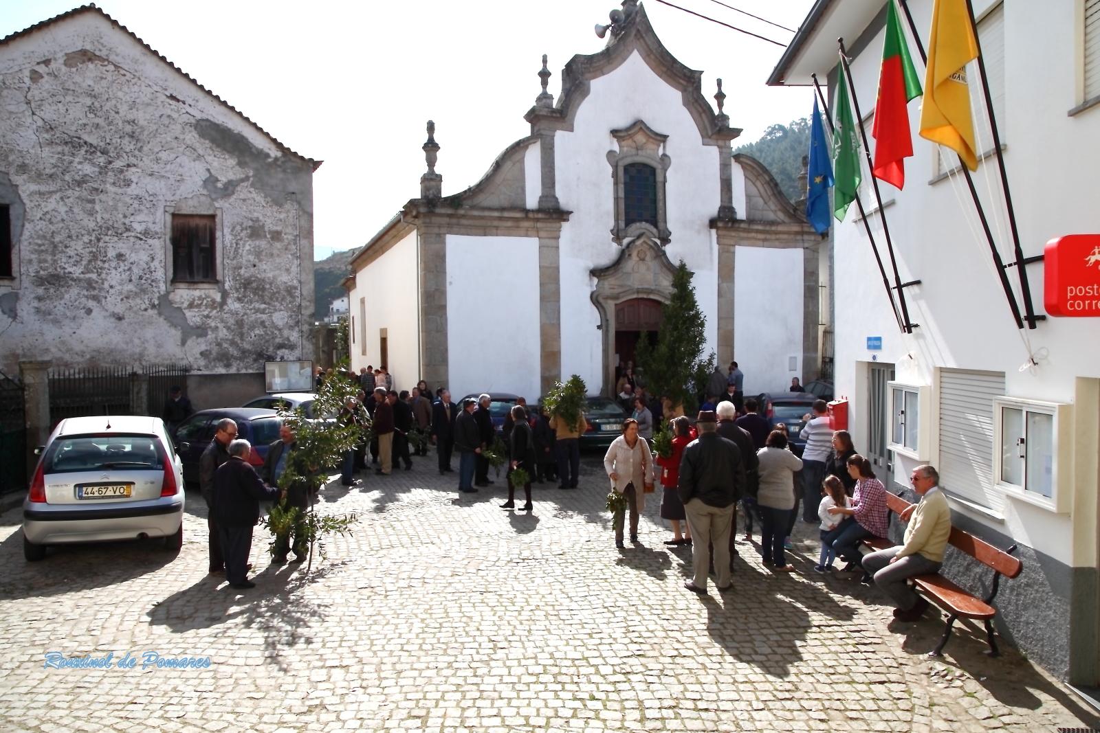 Domingo de Ramos 2015 (4)