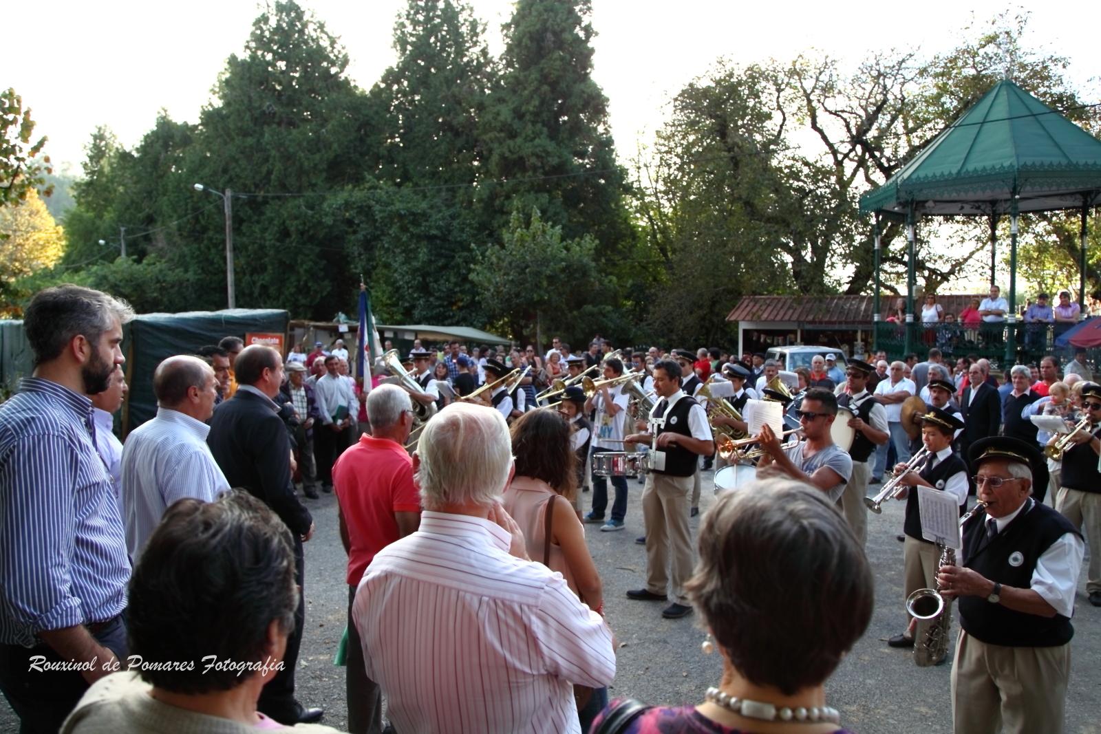 Festa da Castanha Vale de Maceira 2014 (008)