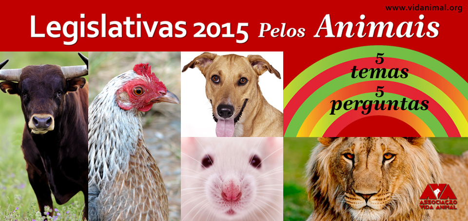 Site_Leg-2015 TOURADAS.jpg